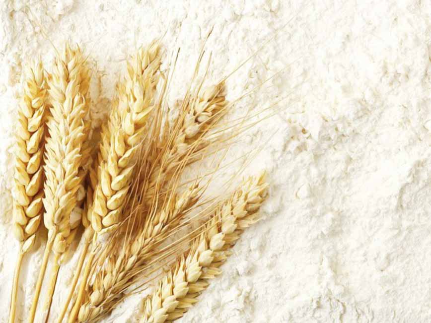 Fortification of Industrially Milled Cereal Grains